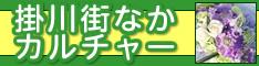 掛川街中カルチャー